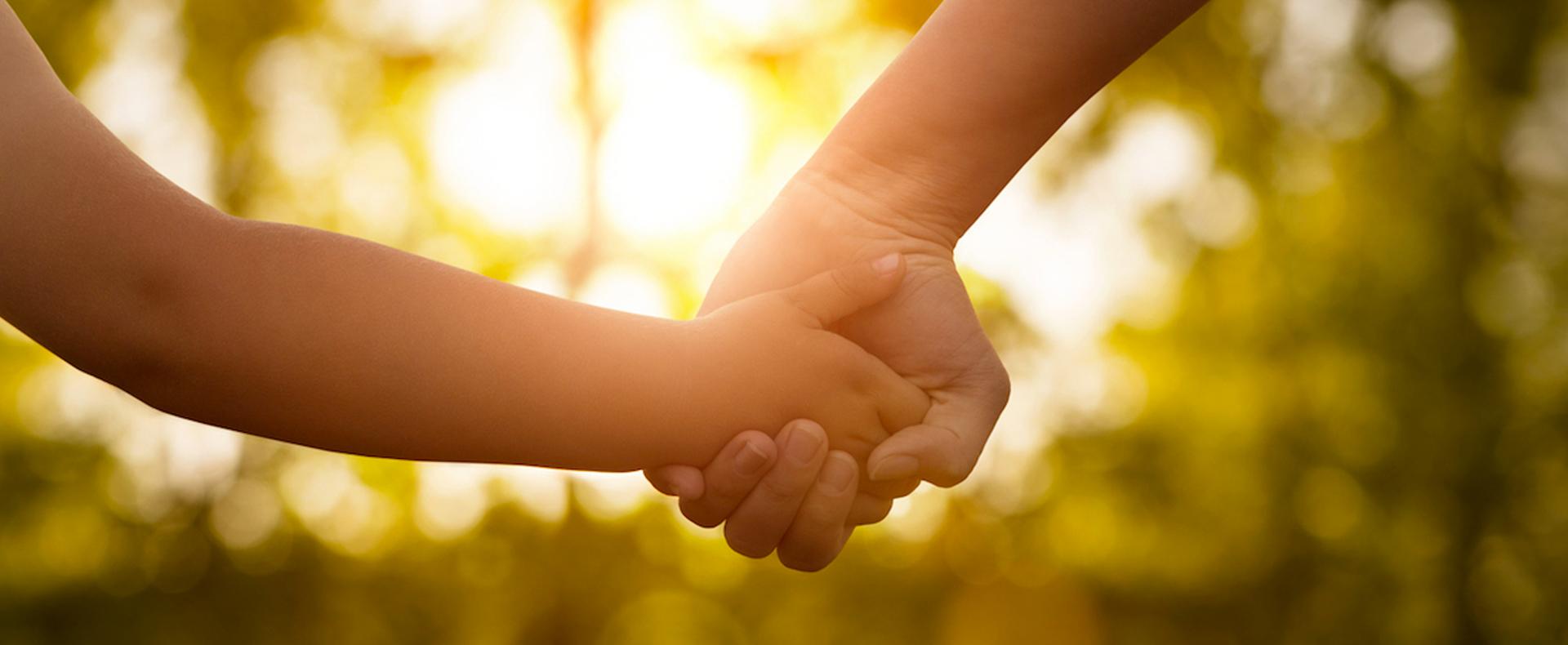 Legado Solidario: <ul> <li>Los legados solidarios son las herencias que se donan, total o parcial, que al concretarse significan un gran aporte económico para las organizaciones de la sociedad civil. Es una manera de dejar a futuro una ayuda que modificará la vida de las personas que más lo necesitan.</li> <li>El legado solidario es un gran acto de amor que marcará el futuro de muchas personas, generando grandes cambios.</li> </ul>